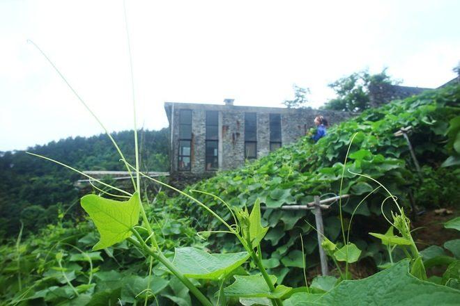 35 1404177565 660x0 Ngôi nhà trên sườn núi của một nhà văn qpdesign