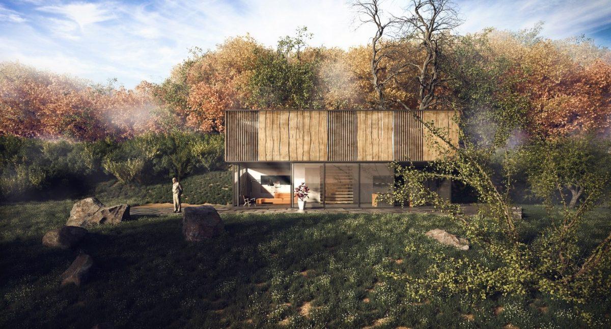 modern-cabin-design