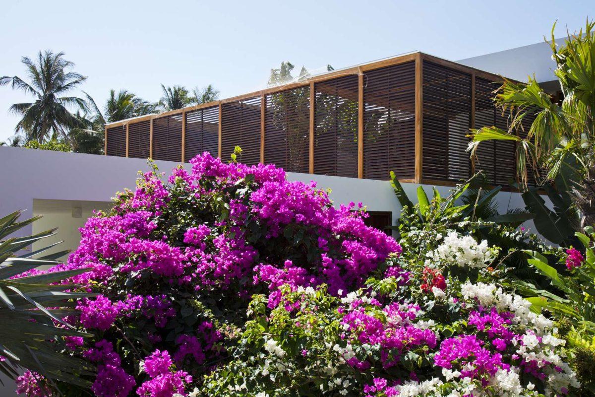 privacy plantings Oceanique, dự án biệt thự sát biển. qpdesign
