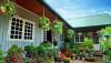Ngôi nhà gỗ xinh với vườn hồng rực rỡ