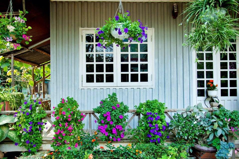 nha go 11 Ngôi nhà gỗ xinh với vườn hồng rực rỡ qpdesign