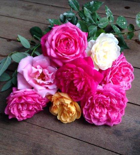 nha go 12 Ngôi nhà gỗ xinh với vườn hồng rực rỡ qpdesign