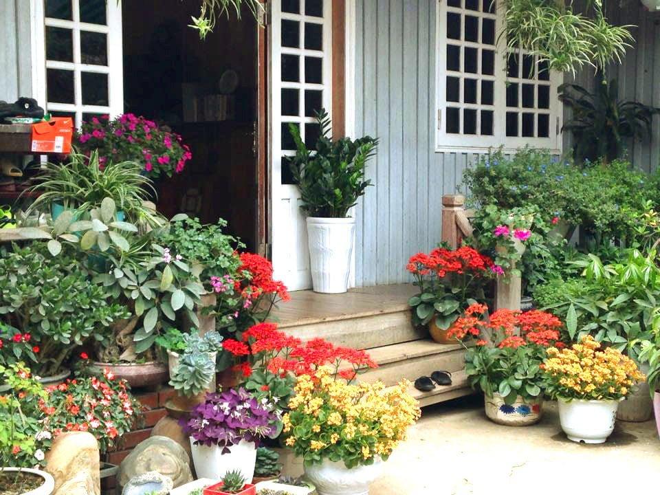 nha go 4 Ngôi nhà gỗ xinh với vườn hồng rực rỡ qpdesign