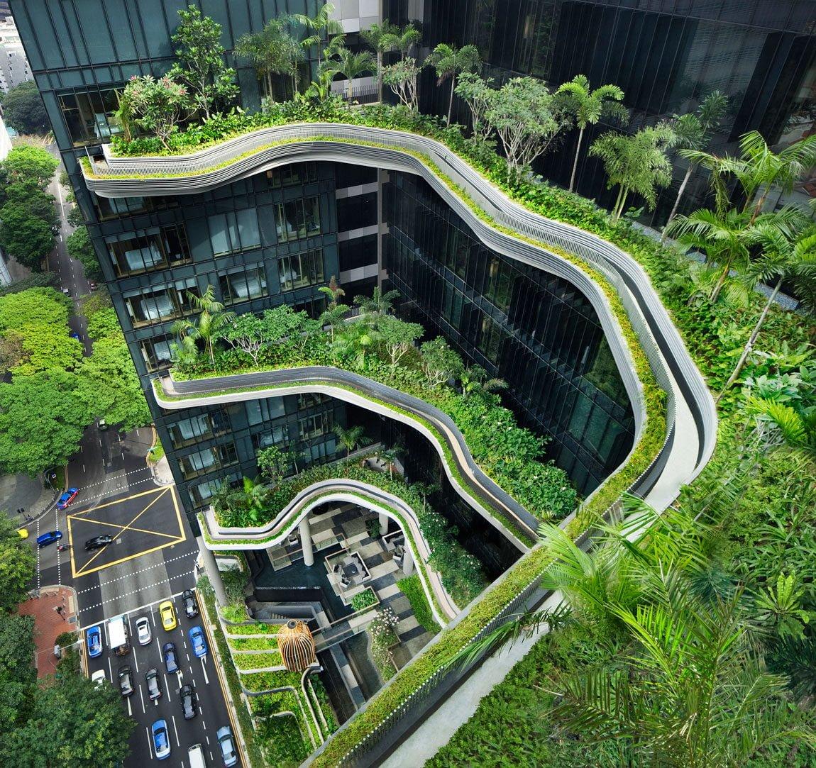 nhìn từ trên cao khách sạn được phủ xanh ở singapore