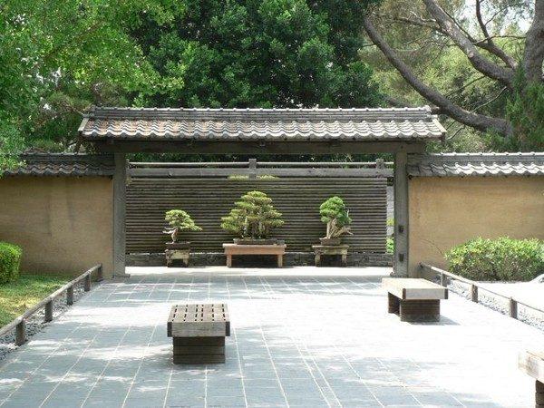 san vuon bonsai 9