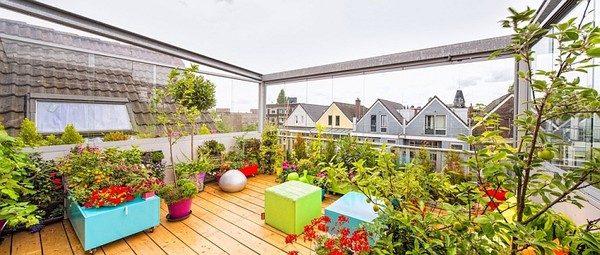 vuon san thuong 4 Khu vườn trên sân thượng giữa thành phố qpdesign