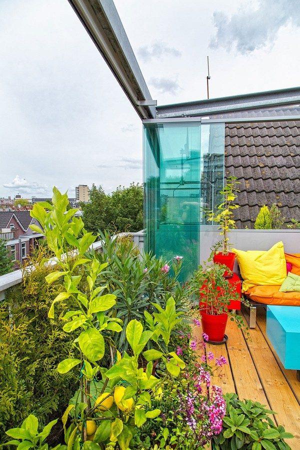 vuon san thuong 6 Khu vườn trên sân thượng giữa thành phố qpdesign