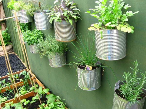 49 Trồng rau để làm đẹp sân vườn qpdesign