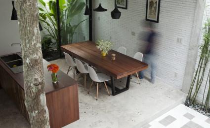 Ngôi nhà giữa nhà ở Sài Gòn thoáng đãng với vườn cây
