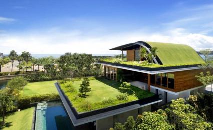 Ngôi nhà mái xanh độc đáo ở Singapore