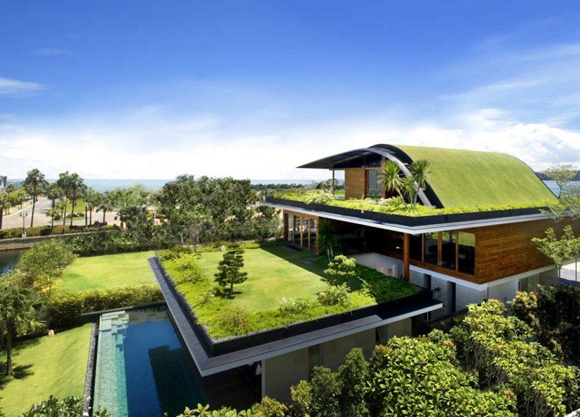 ngôi nhà mái xanh 1
