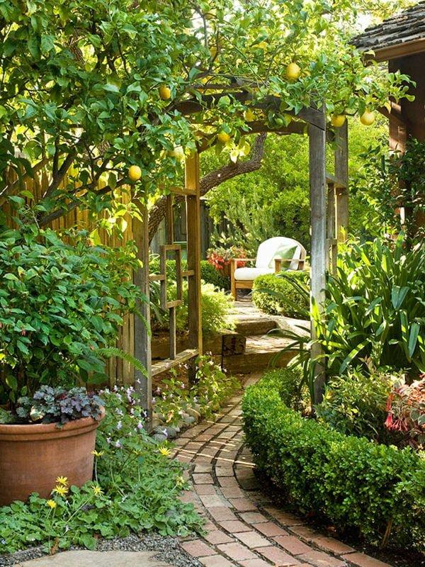 sân vườn hoàn hảo 5