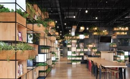 """Thiết kế cafe """"xanh"""" ấn tượng và thân thiện với môi trường"""