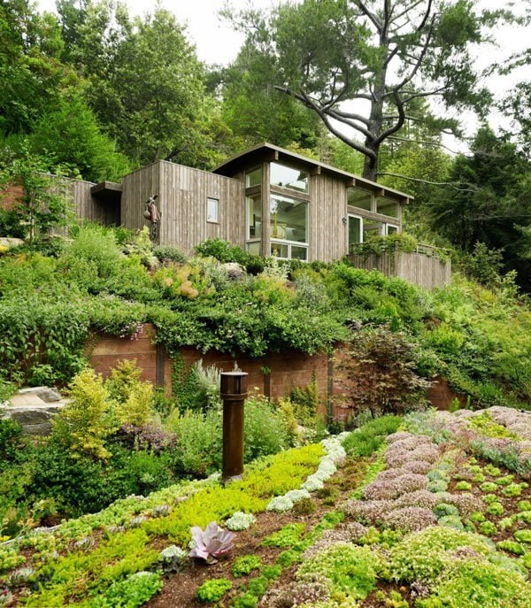 cabin nhỏ 1