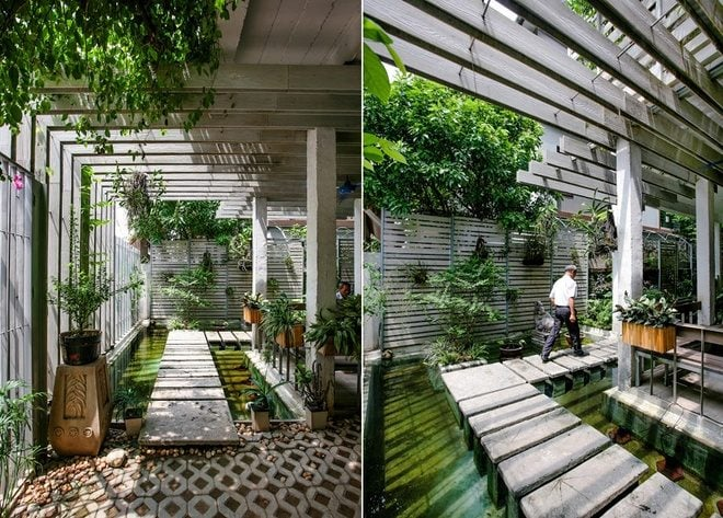 5 Cải tạo nhà 3 tầng thành khu vườn xanh mướt qpdesign
