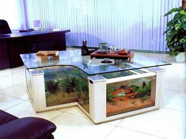Đặt bể cá trong nhà ở đâu để độc đáo và đa năng?