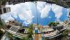 Vegan House - Nhà Sài Gòn cũ được cải tạo đầy sắc màu lên báo Mỹ