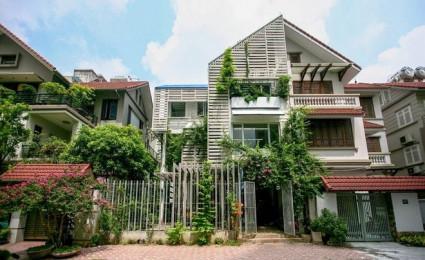 Cải tạo nhà 3 tầng thành khu vườn xanh mướt