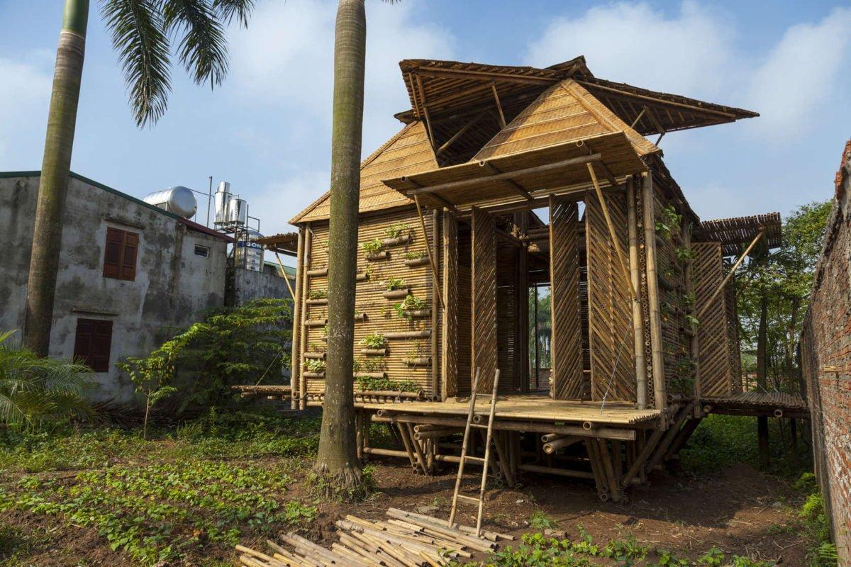 Ngôi nhà tre bình dị giữa lòng Hà Nội