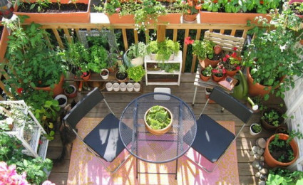 15 ban công nhỏ với vườn hoa tuyệt đẹp