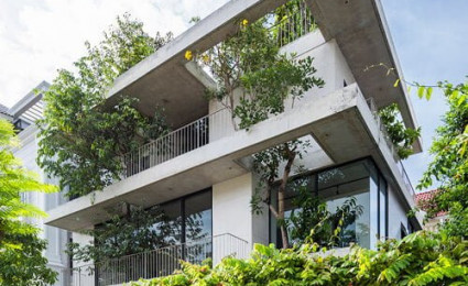 Biệt thự trồng cây mọc xuyên tầng ở Sài Gòn