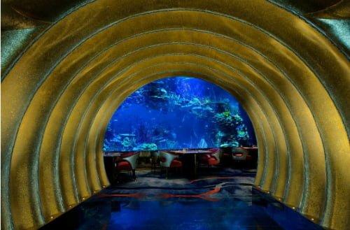 Nhà Hàng Dưới Biển Đầu Tiên Của Châu Âu Tại Na Uy 8