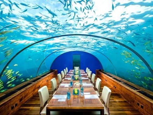 Nhà Hàng Dưới Biển Đầu Tiên Của Châu Âu Tại Na Uy 5