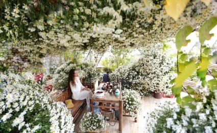 """Vườn hoa """"Siêu to khổng lồ"""" trên sân thượng của nữ đại gia Hà Nội"""